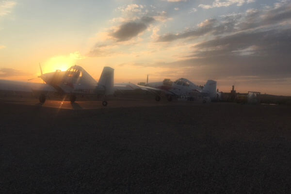Parked planes at sunset